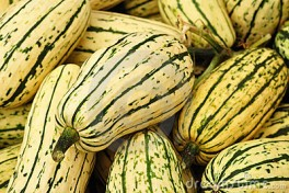 http://www.lafermedelasource.fr/261-thickbox_atch/courge-delicata.jpg